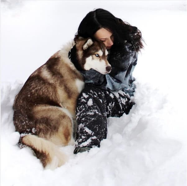winter dog lover