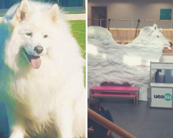 University erects statue in memory of beloved campus dog