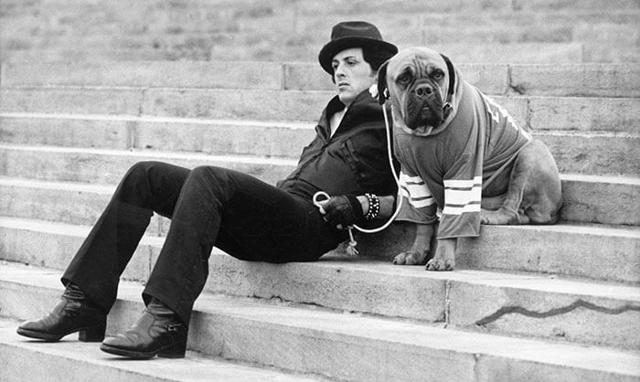 Hollywood dog lover stallone
