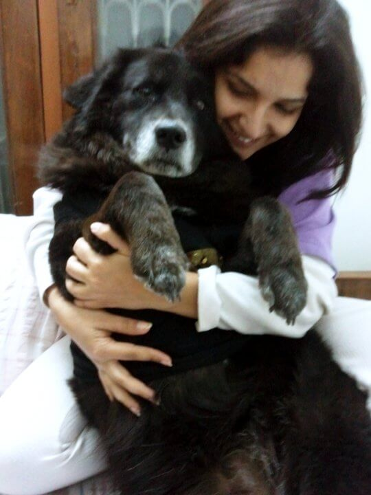 the dog who loved me