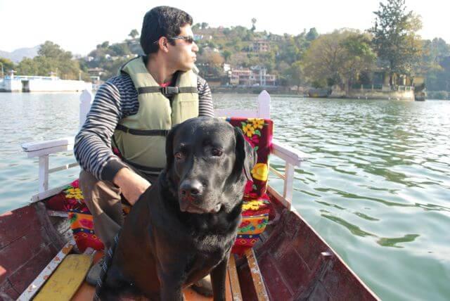 Dog boat ride