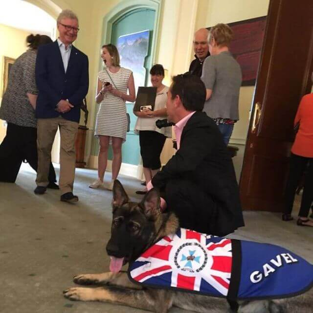 Governor dog Australia