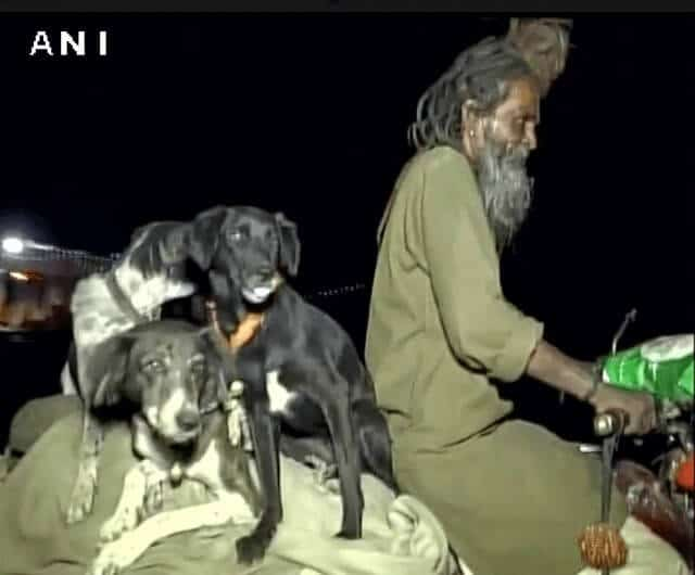 sadhu dogs travel