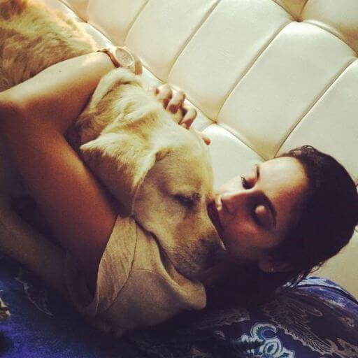 dog lovers India