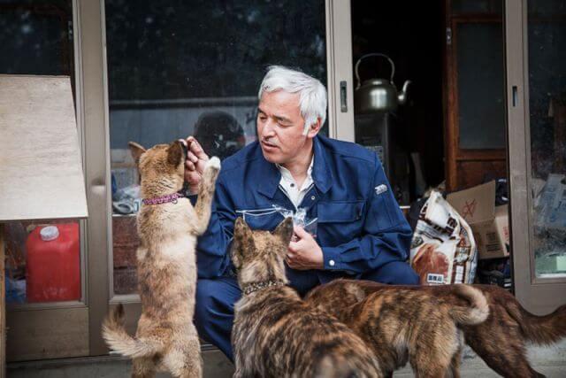 Japan nuclear dog lover