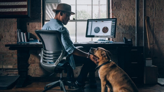Best Dog-Friendly Offices