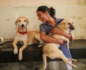 Delhi animal shelter address