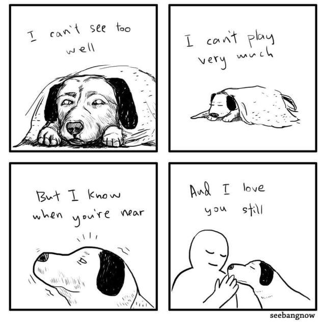 senior dog cartoon