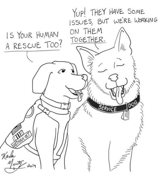 rescue dog comic