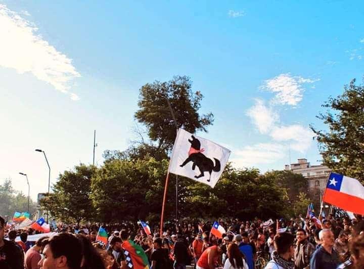 Chile dog flag