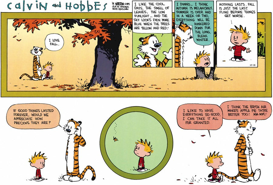 Calvin and Hobbes philosophical comic