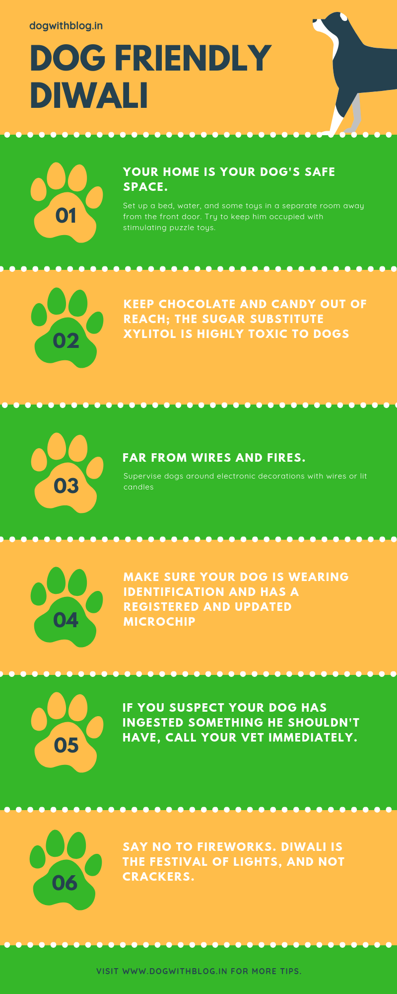 help dogs Diwali infographic