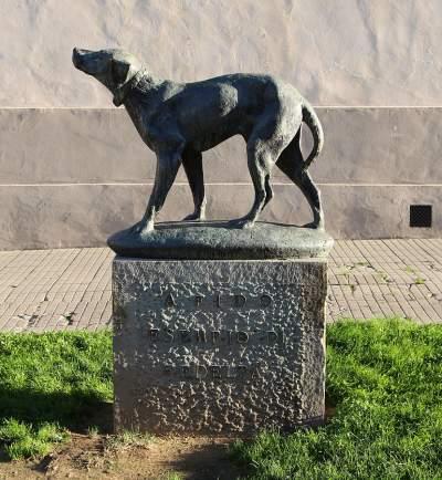 Fido Italy dog statue