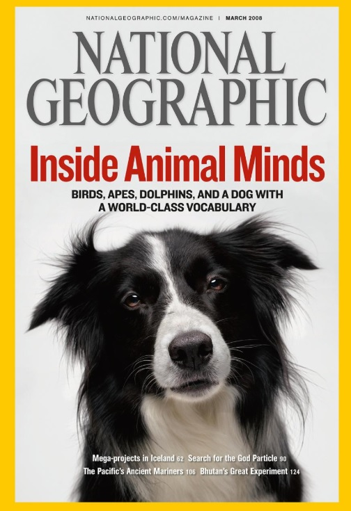 Betsy, the dog, graces the March 2008 cover of National Geographic magazine.