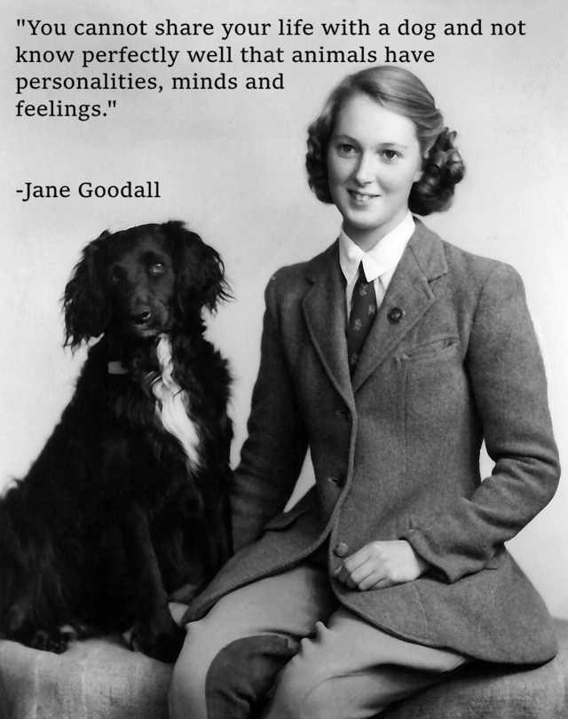 Jane Goodall dog quote