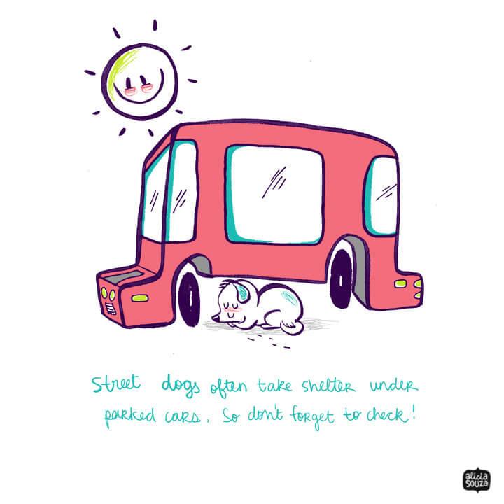 be kind to stray cartoon