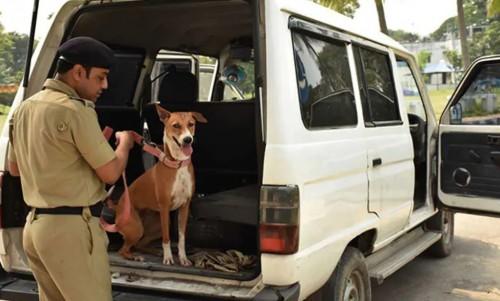 West bengal police stray dog