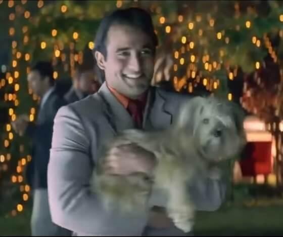 Taal movie dog